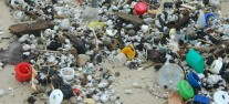 פסולת פלסטיק בחוף. תצלום: ארבל לוי