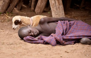 בכל שנה חולים כ-200 מיליון בני אדם במלריה ויותר מחצי מיליון מתים מהמחלה, בעיקר באפריקה. מגוון מינים גדול יותר יכול להוריד שכיחות של מחלות מידבקות. צילום: Rod Waddington, Flickr