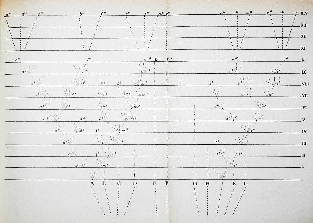 האיור היחידי בספר הוא תרשים שבו מתאר דרווין איך התפצלו המינים השונים. Darwin Online