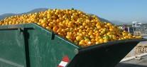 """איבוד מזון. תצלום: ארגון ה-FAO של האו""""ם"""