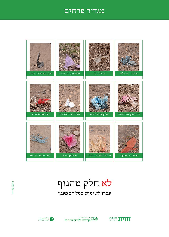 מגדיר פרחים / דניאל בן צרויה