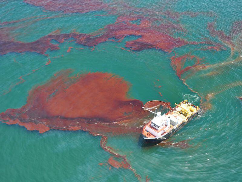 הספוג שיציל את הים מדליפות נפט