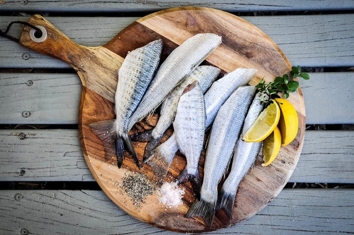 האם בחג הבא נאכל דגים שגדלו במעבדה?