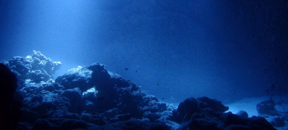 דברים שכורים בקרקעית האוקיינוס