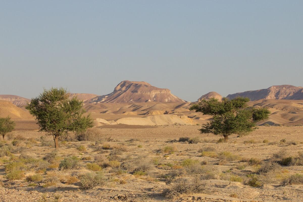 שיא עולם ישראלי בהישרדות במדבר