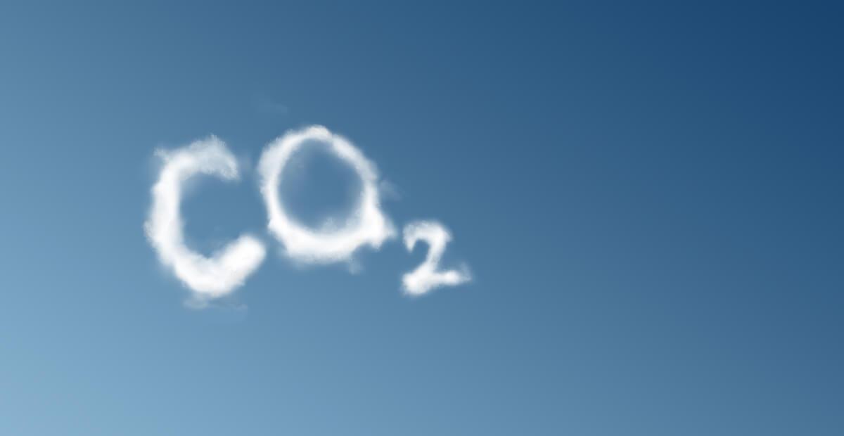 לתפוס את הפחמן
