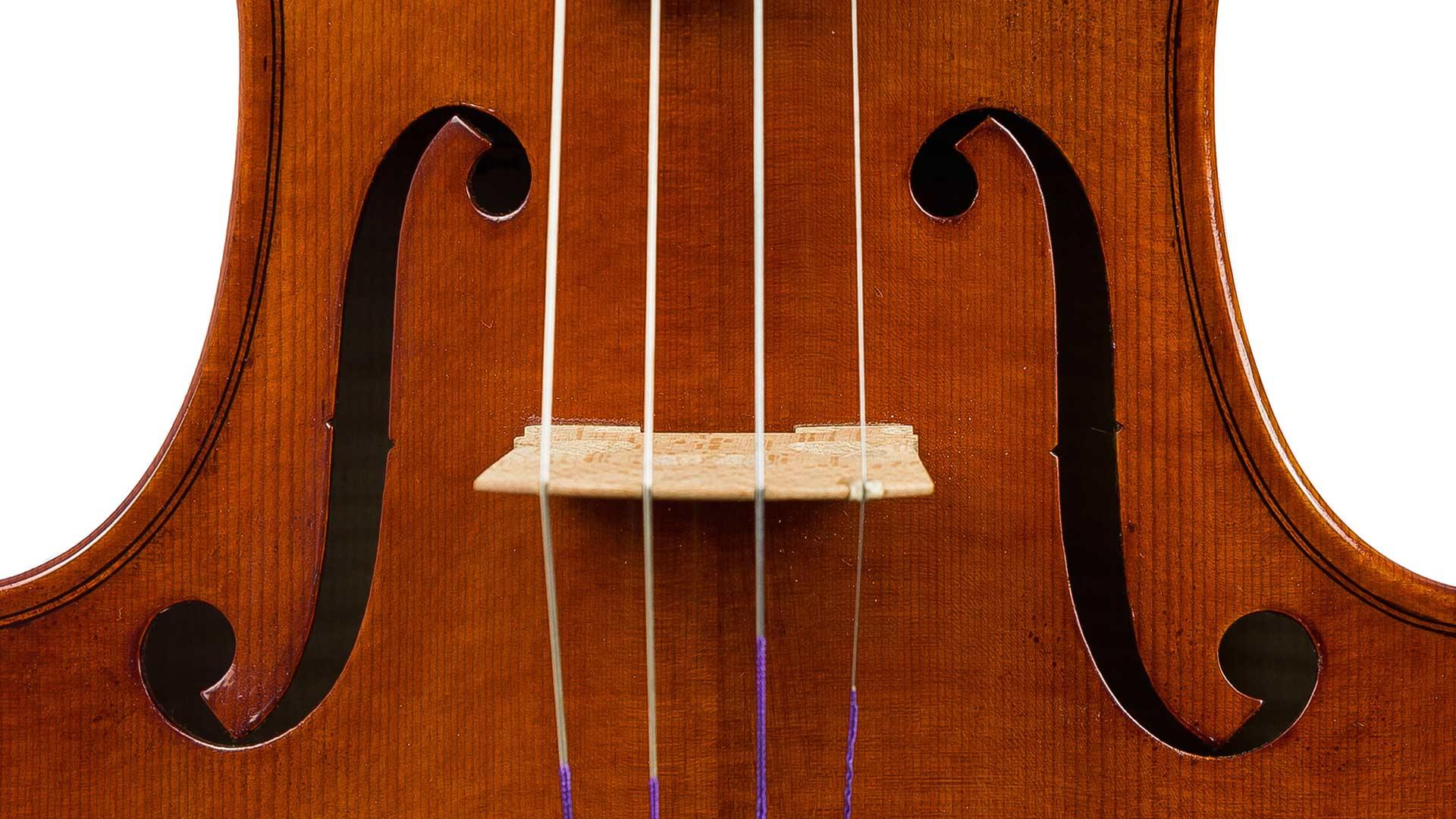 הכינור המפורסם, העיר הרועשת ושינוי האקלים