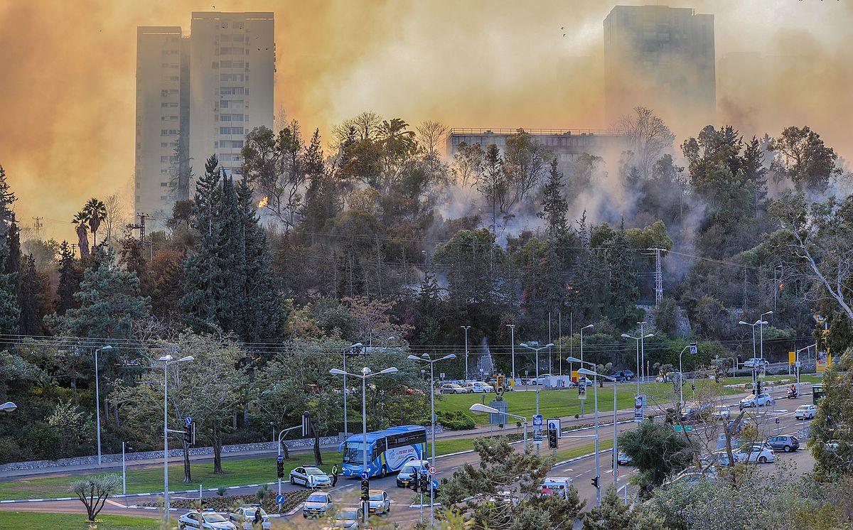 להיערך לשריפה הבאה בחיפה