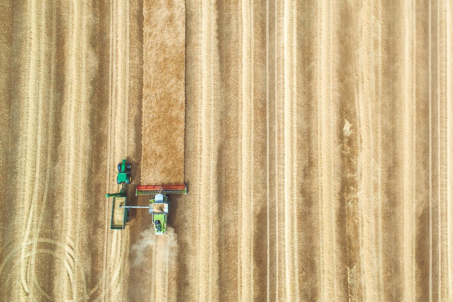 משבר מזון עולמי? הזדמנות כלכלית לישראל