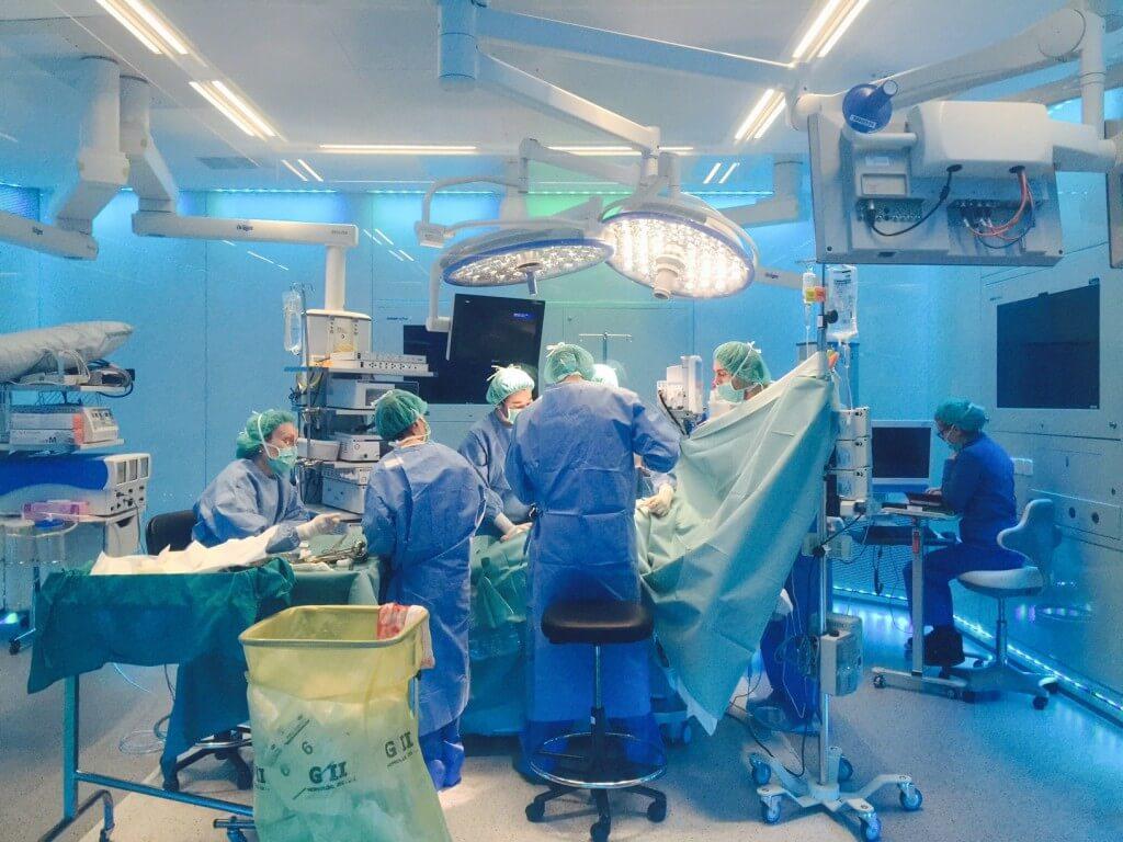 גישת בריאות אחת נחשבת לחדשה ביותר במונחים רפואיים ונדרשים מחקרים מעבדתיים וסביבתיים נוספים על מנת להביאה ליישום מלא. צילום: Eduardo García Cruz.flickr