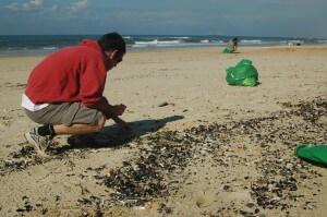 ניקוי חוף מפסולת פלסטיק. תצלום: ארבל לוי