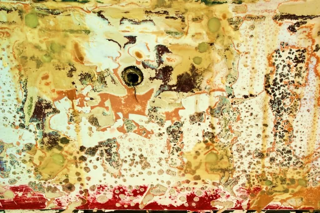 צימדה ביולוגית על קרקעית כלי שיט. תצלום: Rookuzz.flickr