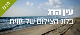 fisheye-banner
