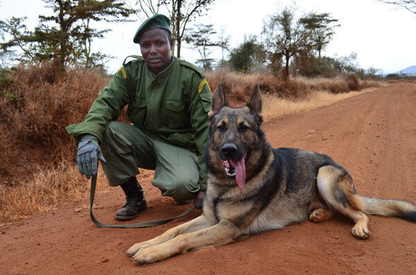 יחידת הכלבים אינה מסוגלת למנוע את הפשע, אך היא גורם הרתעה משמעותי. צילום: Big Life Foundation