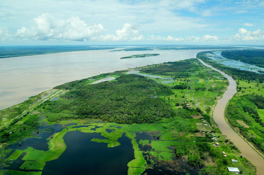 נהר האמזונס ויערות הגשם בברזיל. צילום: Neil Palmer/CIAT