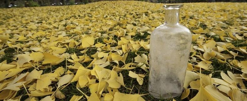 אחד הבקבוקים המקוריים של בייל. תצלום: stepnitz kurt