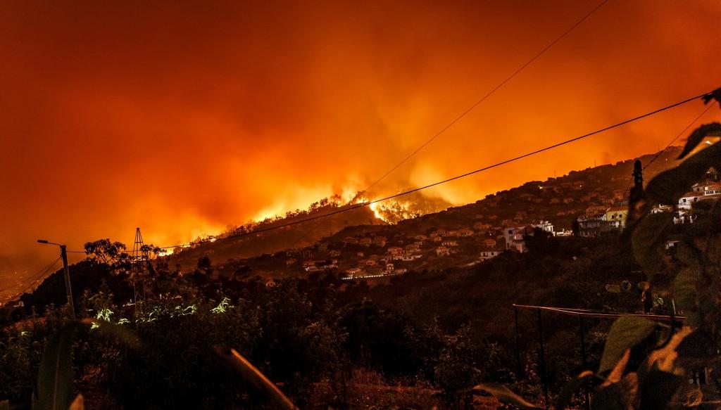 שריפה. תצלום: michael held