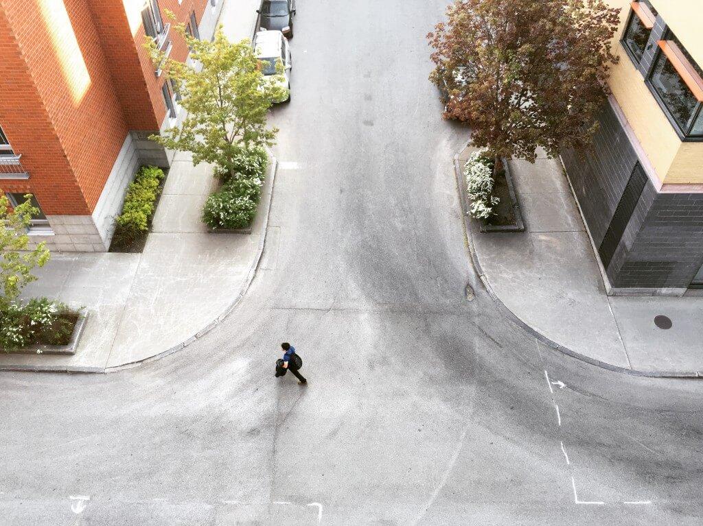 נוף עירוני עם עצים בקוויבק סיטי, קנדה. תצלום: stephen di donato
