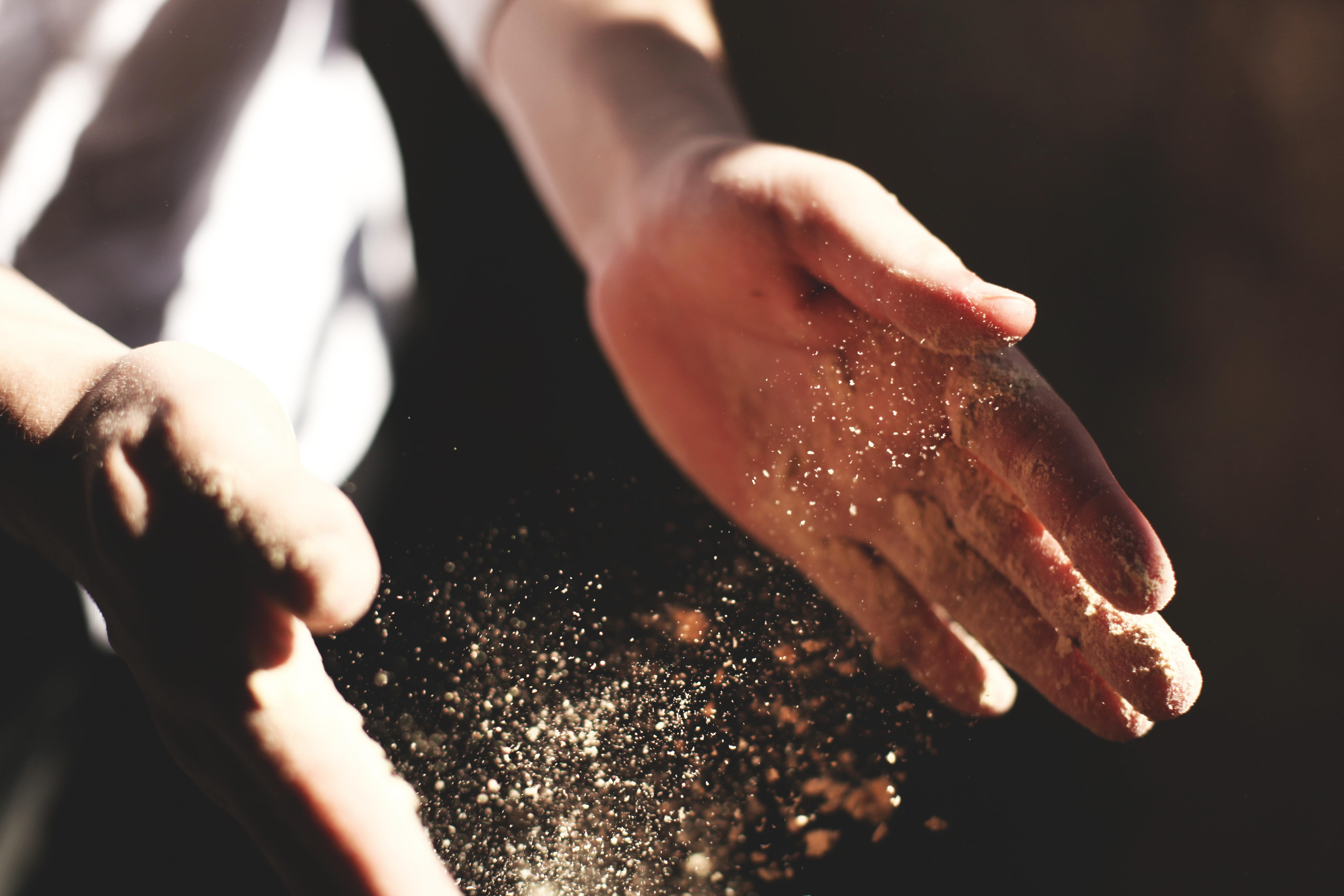 חיידקים נגד אבק