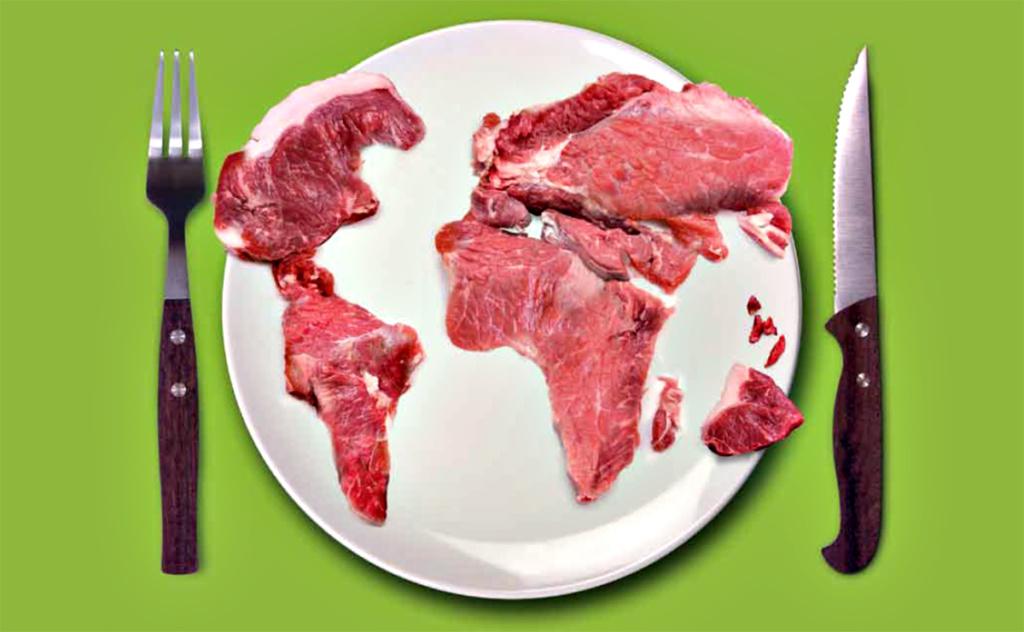 הקשר בין הבשר בצלחת לשריפות באמזונס