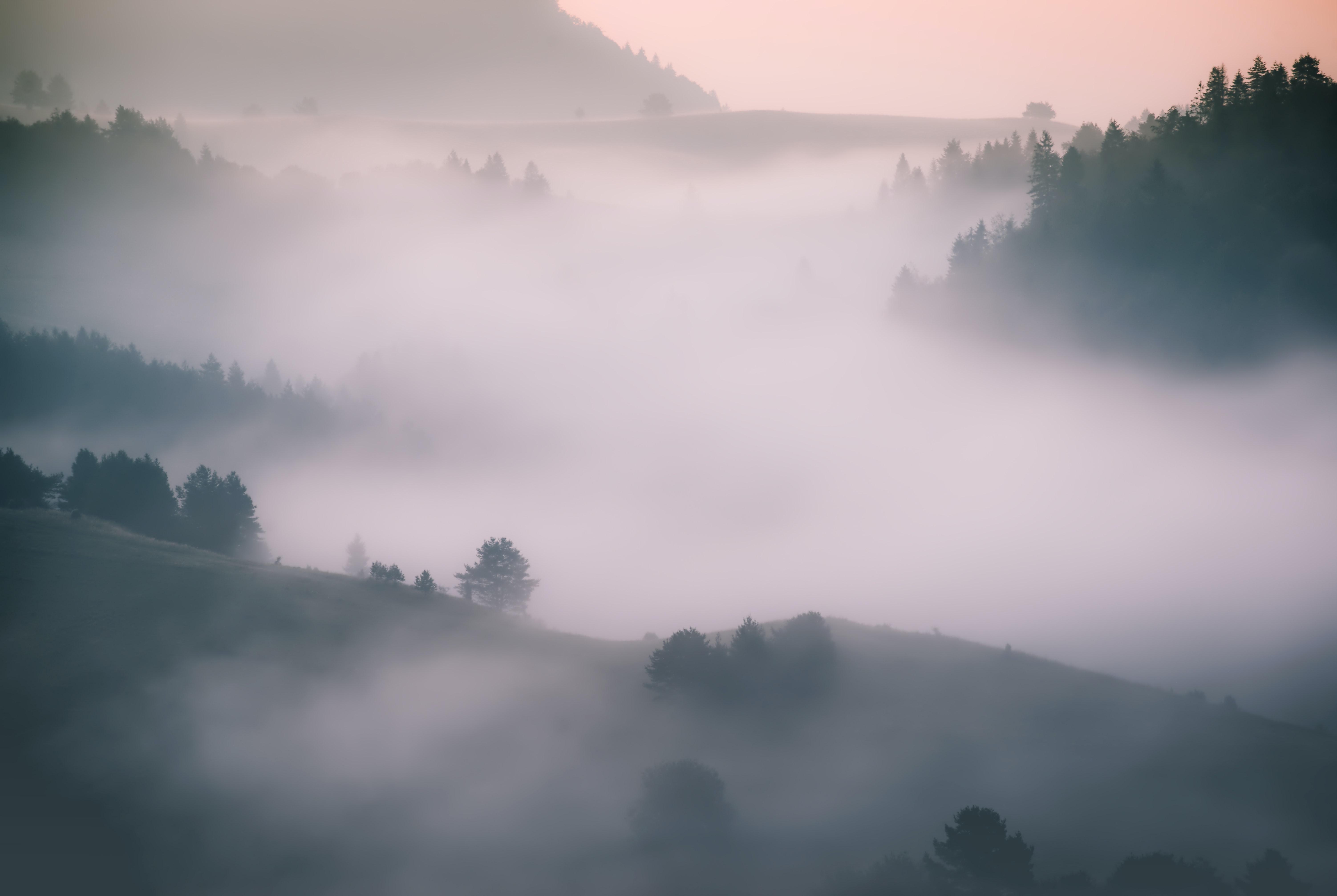 כשהערפל מתפזר, משבר האקלים מתגלה
