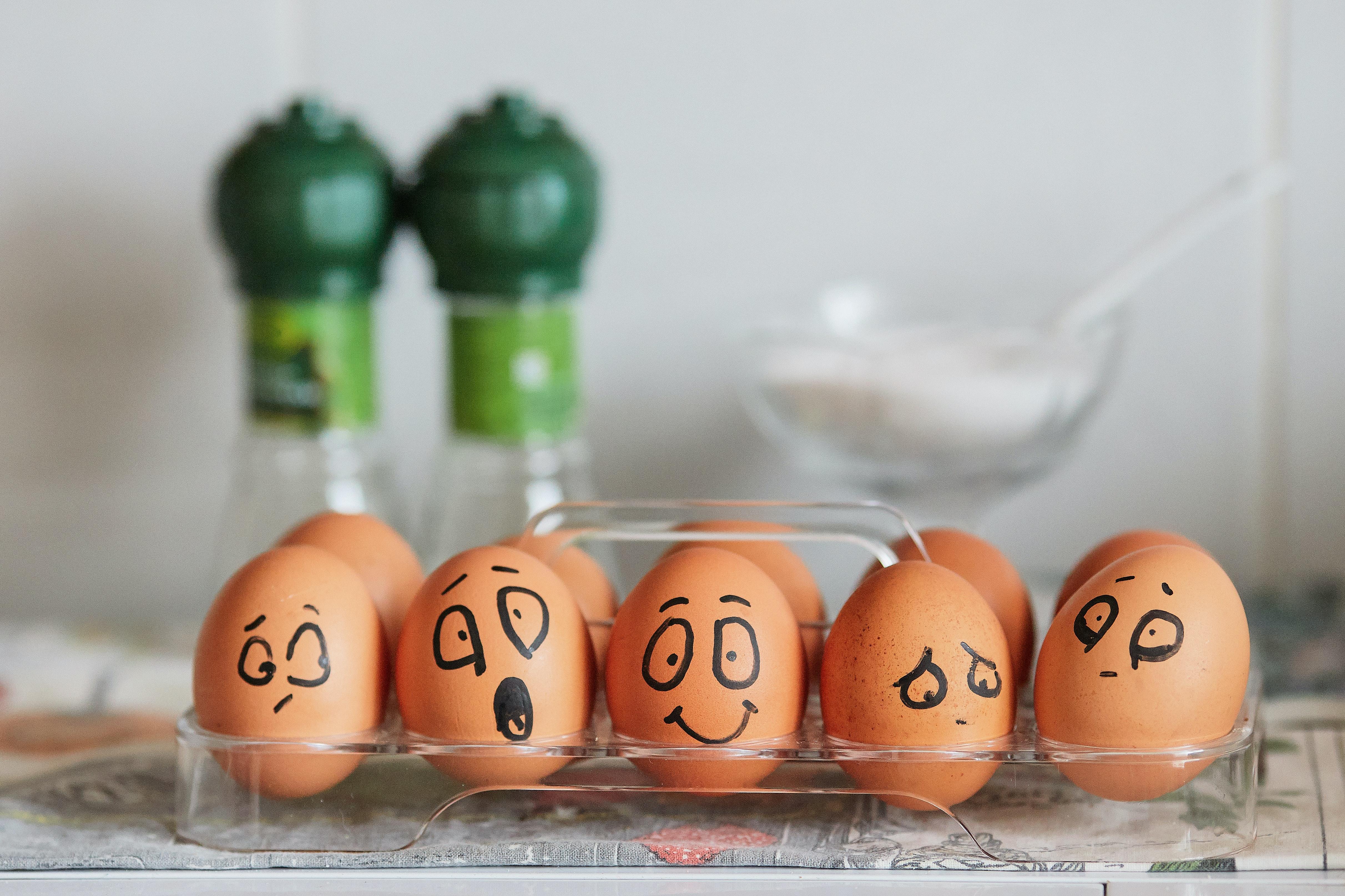 הביצה שהתחפשה