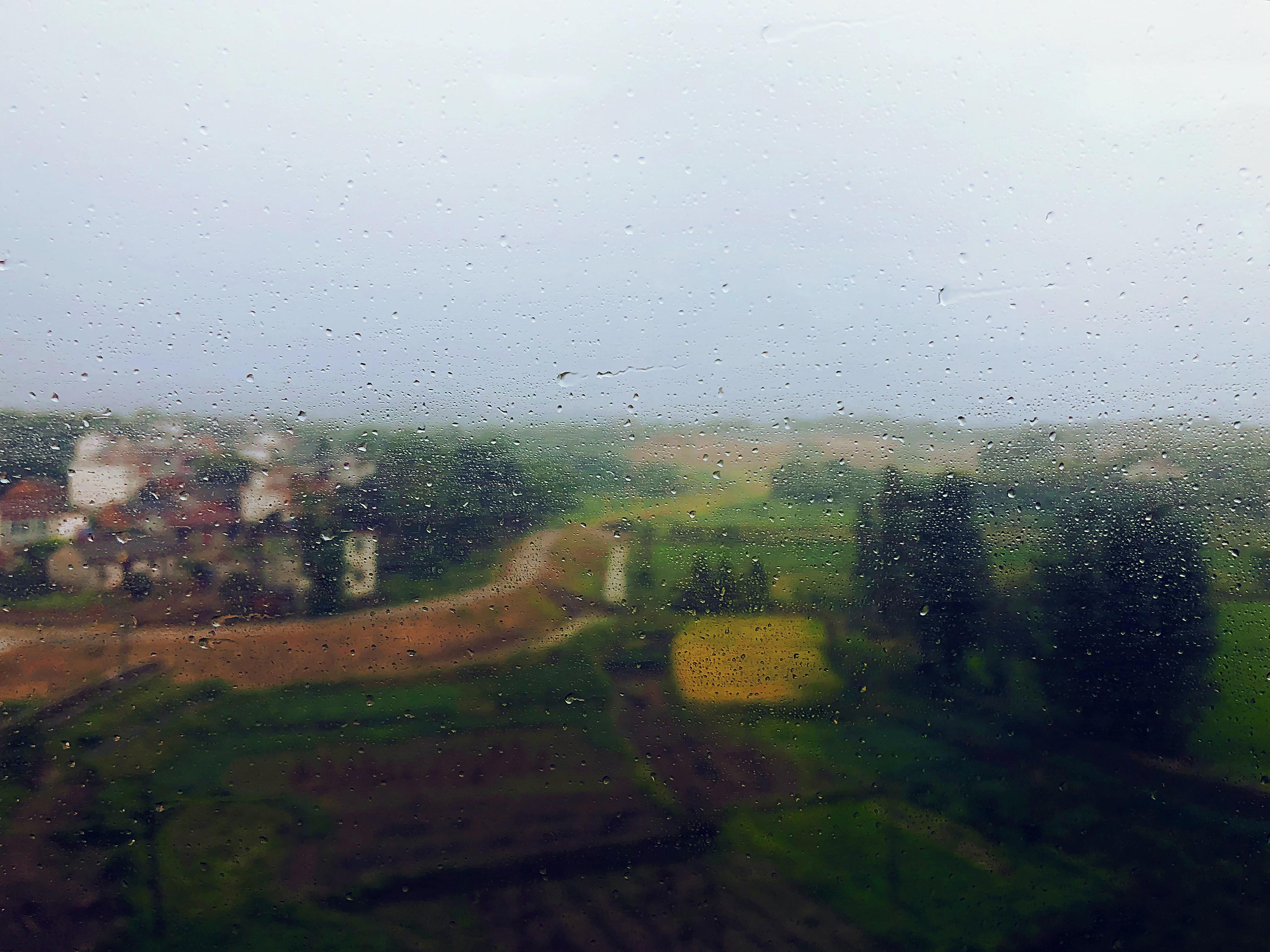 גשמים כאלה מזיקים לחקלאות?
