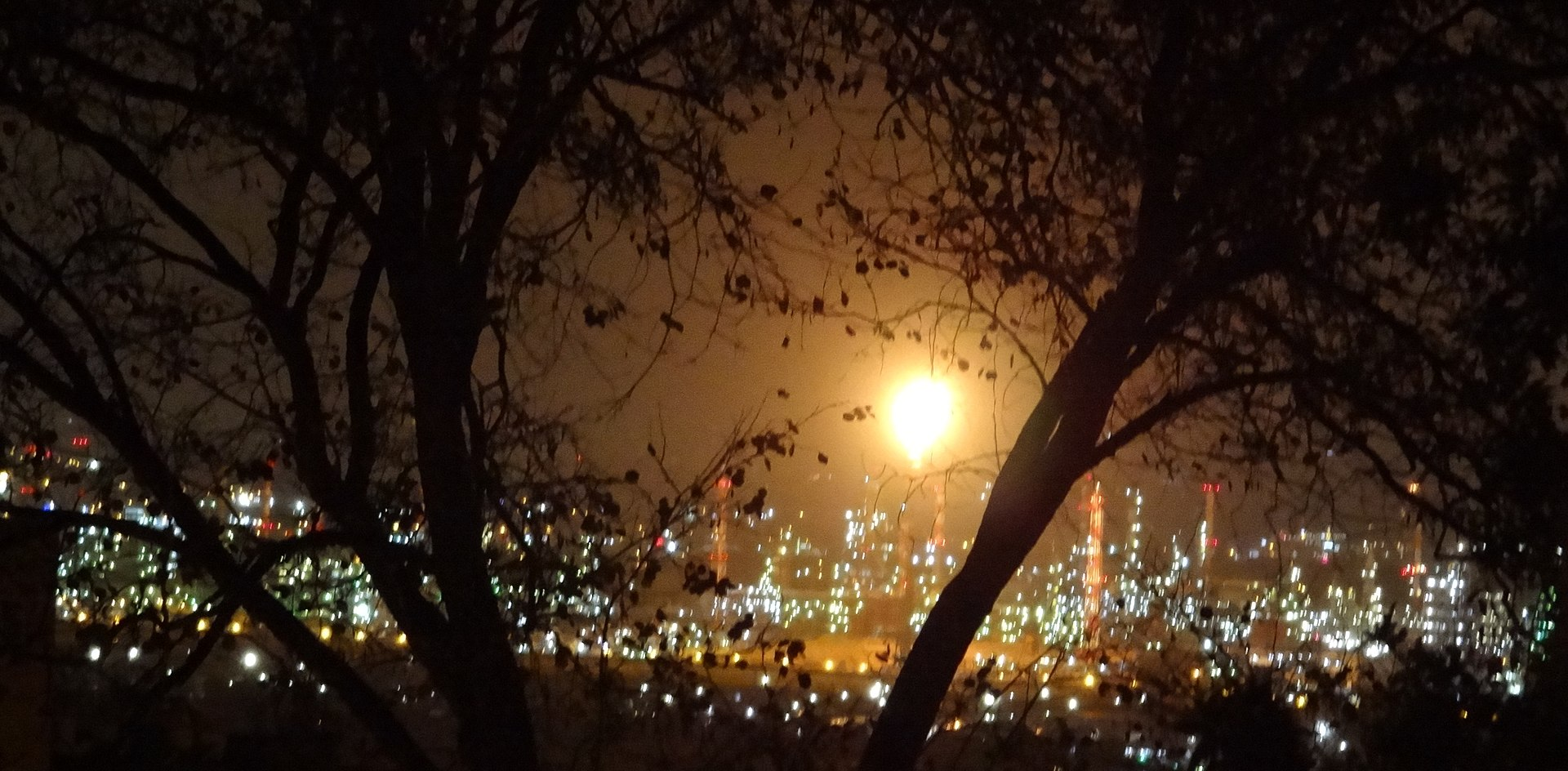 יש משהו מדאיג באוויר של חיפה