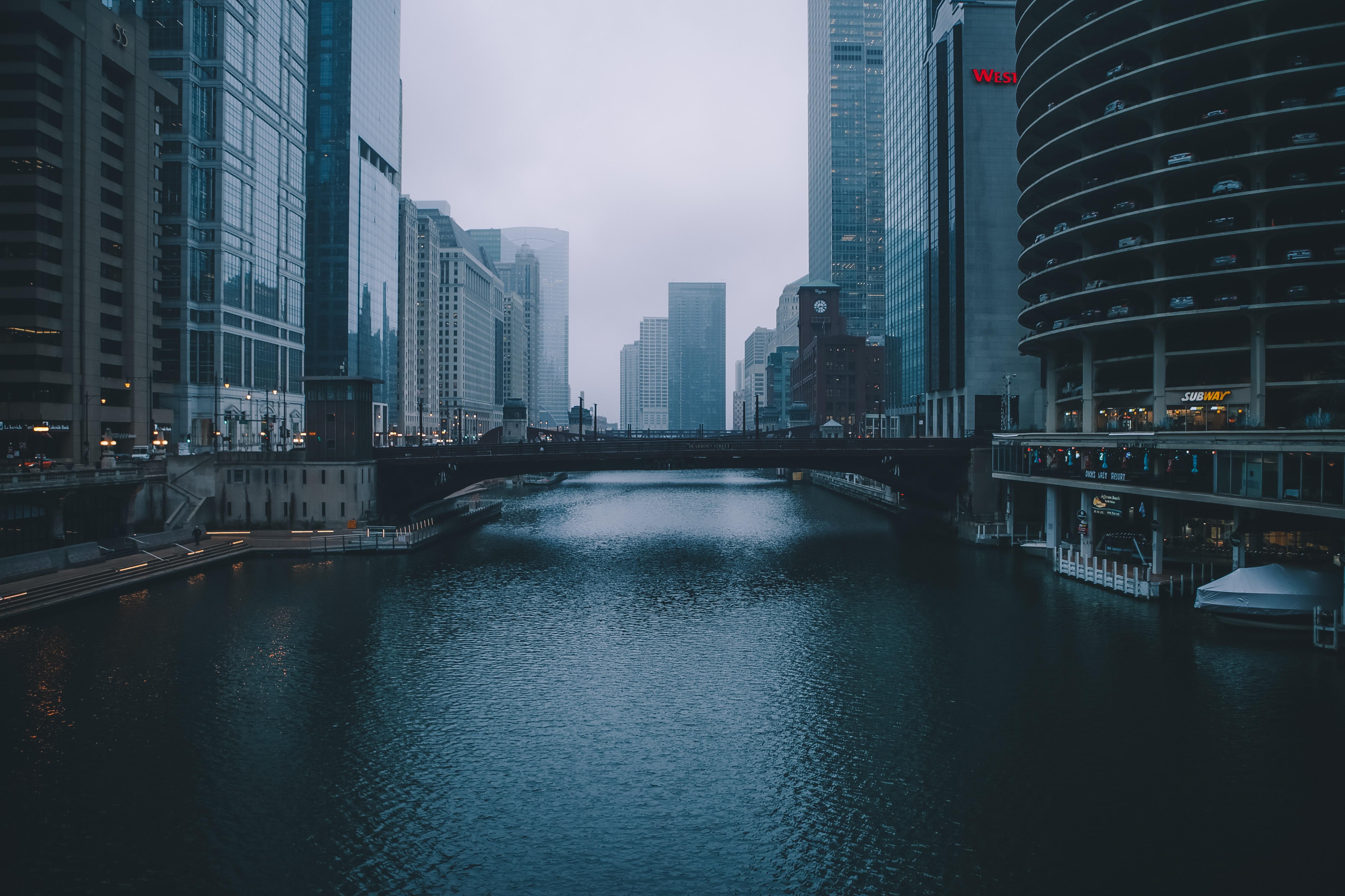 הריאות הכחולות של העיר