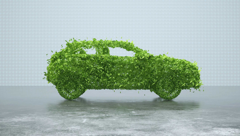 כמה ירוק הרכב שלך?